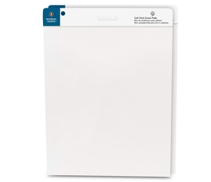 """Business Source 38591 Self-Stick Easel Pads, 25""""x30"""", 30 Shts/Pad, 2/PK, White by Business Source"""