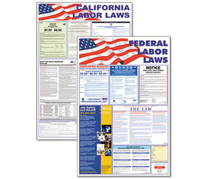 Advantus Corporation 83905 State/Federal Labor Law Legally Required Multi-Colored Poster, 24 x 36 by ADVANTUS CORPORATION