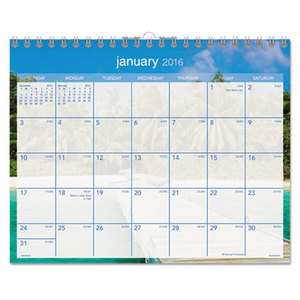 AT-A-GLANCE DMWTE8-28 Tropical Escape Wall Calendar, 15 x 12, 2016 by AT-A-GLANCE